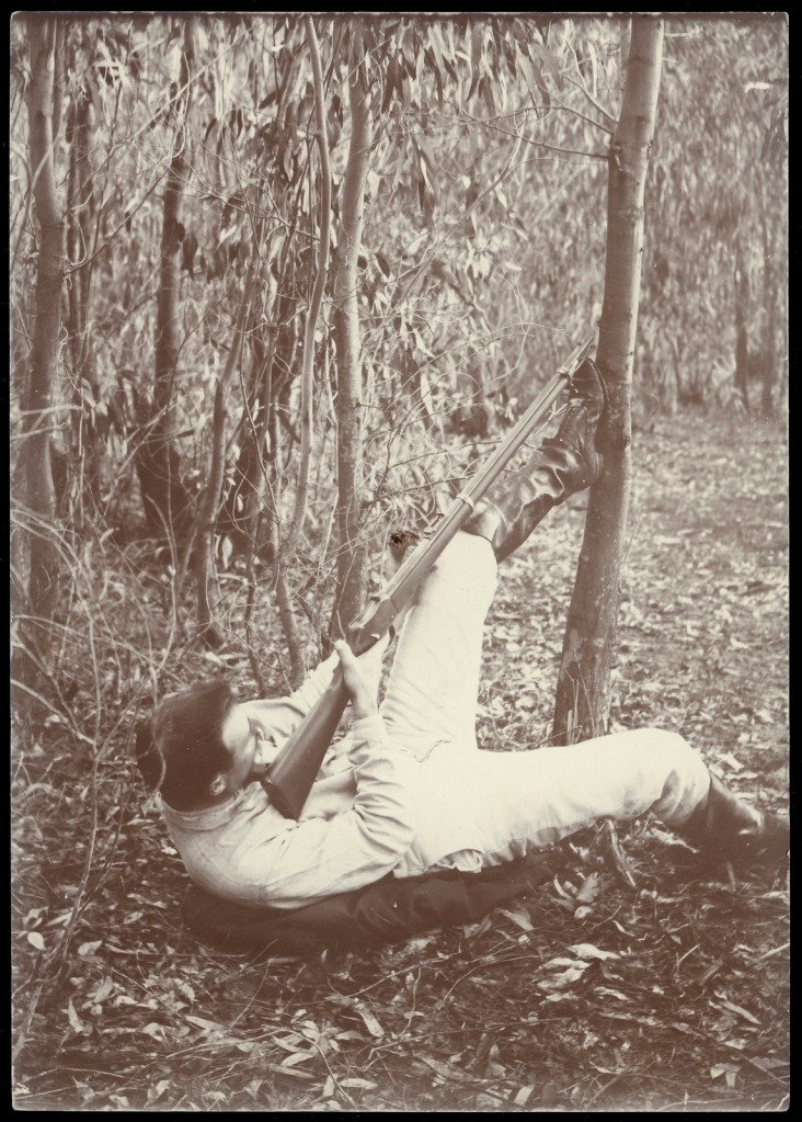 """Original caption: 'A favourite pose when shooting koalas (""""native bears"""") in the bush' approx. 1900-1912 Source CG Lane State Library Victoria"""