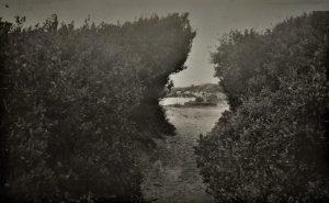 Gap in the Ti-tree, Mordialloc Victoria, approx 1914 Source: SLSA B 28518/64