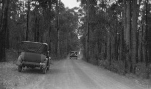 Motor cars travelling on a dirt road through jarrah forest 1920-29 Source SLWA