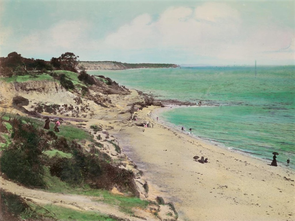 Eroded foreshore reserve 'Sandringham beach from Hampton Point' 1876 -1880s Source: N Caire NGV
