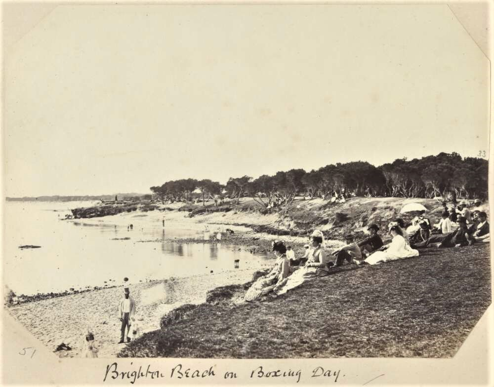 Thinning Coast Teatree 'Brighton Beach Boxing Day' approximately 1880 Source: National Library Australia